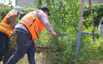 Participan dependencias del Ayuntamiento de Bahía de Banderas en limpieza de escuelas